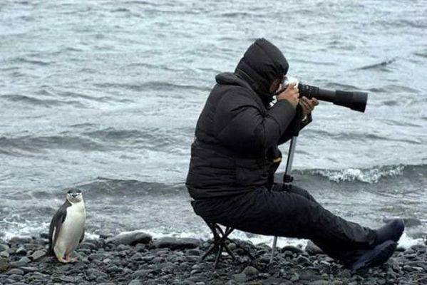 什么样的摄影学校专业?
