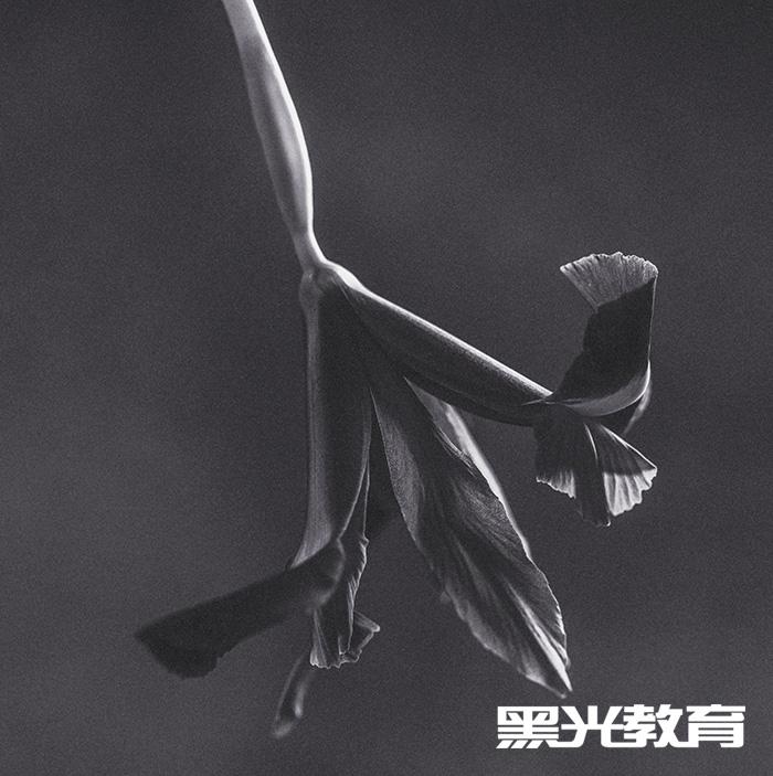 北京静物摄影培训